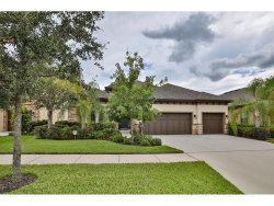 Photo of 13823 Moonstone Canyon Drive, RIVERVIEW, FL 33579 (MLS # T2900166)