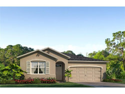 Photo of 13613 Hunting Creek Place, SPRING HILL, FL 34609 (MLS # T2900502)
