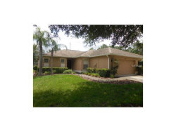 Photo of 9443 Rolling Circle, SAN ANTONIO, FL 33576 (MLS # T2903600)