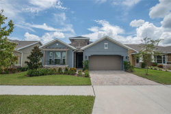 Photo of 13909 Goldfinch Glade Lane, LITHIA, FL 33547 (MLS # T2903688)