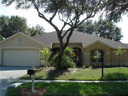 Photo of 4003 Canter Court, VALRICO, FL 33596 (MLS # T2903732)