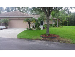 Photo of 9517 Rolling Circle, SAN ANTONIO, FL 33576 (MLS # T2904322)