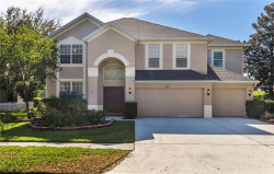 Photo of 9113 Brindlewood Drive, ODESSA, FL 33556 (MLS # T2907699)