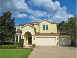 Photo of 4416 Wildstar Circle, WESLEY CHAPEL, FL 33544 (MLS # T2908522)