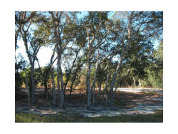 Photo of 18002 Oggie Lane, HUDSON, FL 34667 (MLS # T2908621)