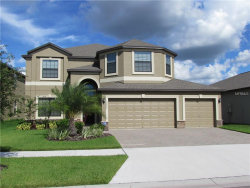 Photo of 10006 Celtic Ash Drive, RUSKIN, FL 33573 (MLS # T2908962)