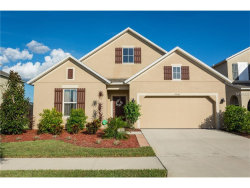Photo of 10161 Celtic Ash Drive, RUSKIN, FL 33573 (MLS # T2909596)