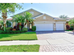 Photo of 11743 Holly Creek Drive, RIVERVIEW, FL 33569 (MLS # T2909929)