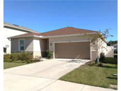 Photo of 11514 Southern Creek Drive, GIBSONTON, FL 33534 (MLS # T2914145)