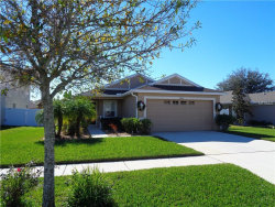 Photo of 19000 New Passage Boulevard, LAND O LAKES, FL 34638 (MLS # T2914972)