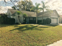 Photo of 2608 Amberly Place, SEFFNER, FL 33584 (MLS # T2915959)