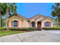 Photo of 21022 Lake Vienna Drive, LAND O LAKES, FL 34638 (MLS # T2916220)