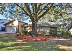 Photo of 1614 Burning Tree Lane, BRANDON, FL 33510 (MLS # T2918293)