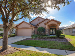 Photo of 1689 Cherry Ridge Drive, LAKE MARY, FL 32746 (MLS # T2918309)