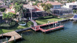 Photo of 9817 Bay Island Drive, TAMPA, FL 33615 (MLS # T2918549)