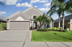 Photo of 1212 Horsemint Lane, WESLEY CHAPEL, FL 33543 (MLS # T2918561)