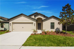Photo of 914 Wynnmere Walk Avenue, RUSKIN, FL 33570 (MLS # T2918596)