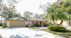 Photo of 3030 Wister Circle, VALRICO, FL 33596 (MLS # T2922883)