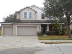 Photo of 2634 Red Fern Drive, DOVER, FL 33527 (MLS # T2922984)
