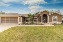 Photo of 11119 Moshie Lane, SAN ANTONIO, FL 33576 (MLS # T2923525)