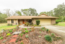 Photo of 5414 Shakespeare Drive, DOVER, FL 33527 (MLS # T2923596)