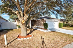 Photo of 1311 Flexford Street, BRANDON, FL 33511 (MLS # T2923897)