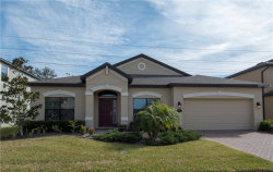 Photo of 714 Wellington Court, OLDSMAR, FL 34677 (MLS # T2925738)