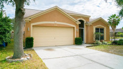 Photo of 9024 Sheldon Chase Drive, TAMPA, FL 33635 (MLS # T2927277)