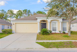Photo of 30333 Randall Manor Street, WESLEY CHAPEL, FL 33545 (MLS # T2928704)