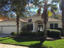 Photo of 10540 Deerberry Drive, LAND O LAKES, FL 34638 (MLS # T2930097)
