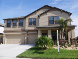 Photo of 5044 Ivory Stone Drive, WIMAUMA, FL 33598 (MLS # T2932800)