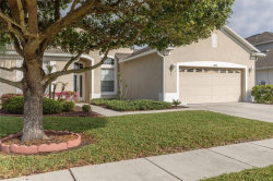 Photo of 19109 Beatrice Lane, LAND O LAKES, FL 34638 (MLS # T2934655)