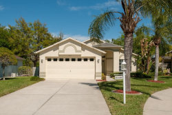 Photo of 1314 Hickory Moss Place, TRINITY, FL 34655 (MLS # T2934822)