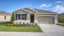 Photo of 31698 Tansy Bend, WESLEY CHAPEL, FL 33545 (MLS # T2935218)