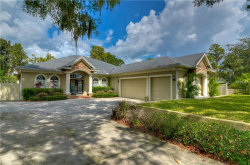 Photo of 15914 Willowdale Road, TAMPA, FL 33625 (MLS # T2935739)