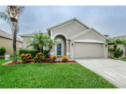 Photo of 10442 Peppergrass Court, TRINITY, FL 34655 (MLS # U7821834)