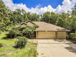 Photo of 6011 Forest Creek Drive, BROOKSVILLE, FL 34601 (MLS # U7822242)