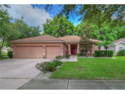 Photo of 1139 Lumsden Trace Circle, VALRICO, FL 33594 (MLS # U7823878)