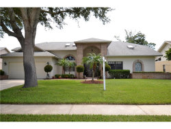 Photo of 3373 E Lake Shore Lane, CLEARWATER, FL 33761 (MLS # U7826497)