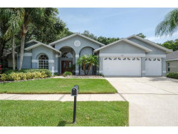 Photo of 211 Water View Court, SAFETY HARBOR, FL 34695 (MLS # U7828626)