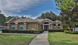 Photo of 2010 Water Wheel Court, DUNEDIN, FL 34698 (MLS # U7832634)