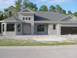 Photo of 12915 Eagles Entry Drive, ODESSA, FL 33556 (MLS # U7835396)