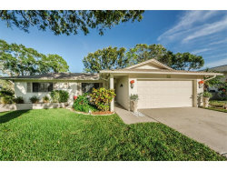 Photo of 1207 Timberbrooke Drive, PALM HARBOR, FL 34684 (MLS # U7835615)