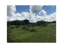 Photo of 000 Popago Estates - Lot 8, DOVER, FL 33527 (MLS # U7835822)