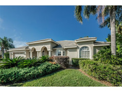 Photo of 9647 Venturi Drive, TRINITY, FL 34655 (MLS # U7839587)