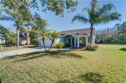 Photo of 16028 Shinnecock Drive, ODESSA, FL 33556 (MLS # U7844998)