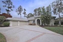 Photo of 1367 Briargrove Way, OLDSMAR, FL 34677 (MLS # U7847630)