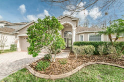 Photo of 304 Bay Arbor Boulevard, OLDSMAR, FL 34677 (MLS # U7847971)