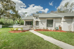 Photo of 3330 Killdeer Place, PALM HARBOR, FL 34685 (MLS # U7849142)