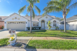 Photo of 309 Wood Dove Avenue, TARPON SPRINGS, FL 34689 (MLS # U7850401)